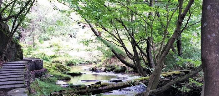 滝川の里 小川
