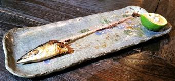 秋刀魚 食後
